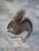 Snow Scene Pastels Posters - Gray Squirrel Poster by Jackie  Hill