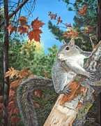 Marshall Bannister - Gray Squirrel