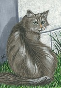 Sherry Goeben - Gray Tabby Cat -- Can