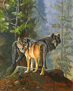 Wildlife Landscape Painting Prints - Gray Wolves Print by Jeff Brimley