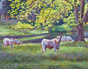 Pastoral Landscape Framed Prints - Grazing By the Lake Framed Print by David Lloyd Glover