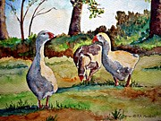 Andries Hartholt - Grazing geese
