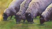 Sheep Farm Prints - Grazing Print by Marsha Elliott