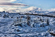 Invergarry Photos - Greag Amhaim - Winter Solitude by Walter Hampson
