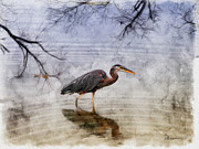 Great Mixed Media - Great Blue Heron Fishing - Featured in Cards for all Occasions Group by EricaMaxine  Price