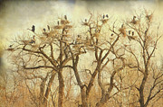 Wildlife Art Acrylic Prints Prints - Great Blue Heron Hangout Fine Art Print by James Bo Insogna