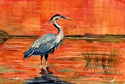 Great Blue Heron Paintings - Great Blue Heron in Marsh by Melly Terpening