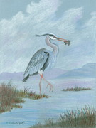 Finger Lakes Painting Framed Prints - Great Blue Heron Framed Print by Sara Davenport