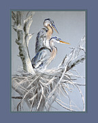 Nest Pastels Posters - Great Blue Herons on Nest Poster by Kathryn Yoder