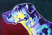Funny Pet Paintings - Great Dane - Boz by Alicia VanNoy Call