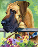 Great Dane Art Framed Prints - Great Dane on balcony Framed Print by Lyn Cook