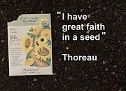 Local Food Photo Posters - Great Faith in a Seed Poster by Jon Simmons