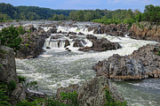 Potomac River Posters - Great Falls of the Potomac Poster by Olivier Le Queinec