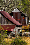 Tennessee Barn Prints - Great Grandpas Place Print by Debra and Dave Vanderlaan