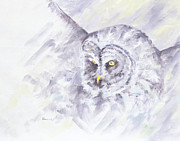 Great Painting Originals - Great Grey Owl by Bonnie Bowne