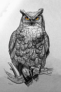 Sandi OReilly - Great Horned Owl Black...