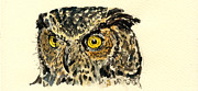 Original Owl Drawing Prints - Great Horned Owl Print by Juan  Bosco
