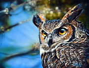 Great-horned Owls Paintings - Great Horned Owl by Lisa Clough Lachri