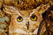 Great Horned Owl Print by Melissa Bittinger