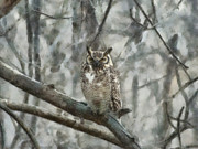 Great Birds Digital Art Posters - Great Horned Owl Painterly Poster by Ernie Echols