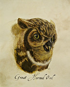 Gouache Paintings - Great Horned Owl by Rachel Root
