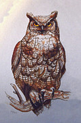 Sandi OReilly - Great Horned Owl