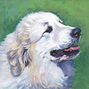 Dog Art Paintings - Great Pyrenees  by Lee Ann Shepard
