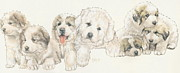 Puppies Mixed Media - Great Pyrenees Puppies by Barbara Keith