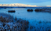 Frozen Shore Prints - Great Salt Lake Print by Utah Images