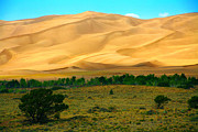 Mike Flynn - Great Sand Dunes