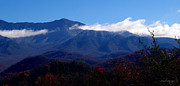 Chanda Henne - Great Smoky Mountain...