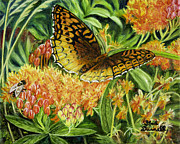 Orange And Brown Wings Originals - Great Spangled Fritillary Butterfly by Gail Darnell