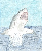 Great Drawings - Great White Breaching by Ethan
