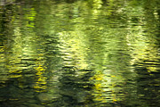 Dark Green Posters - Green Abstract Water Reflection Poster by Christina Rollo