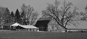 Black And White Photography Painting Metal Prints - Green Acres Metal Print by Kirt Tisdale