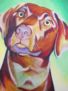 Dog Portraits Prints - Green and brown Dog Print by Joshua Morton