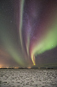 Frank Olsen - Green and purple Auroras