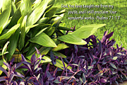 Just Do It Posters - Green and Purple Foliage Ps. 71v17 Poster by Linda Phelps