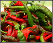 Hot Peppers Originals - Green and Red Hot Chili Peppers by Dora Sofia Caputo