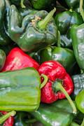 Farm Stand Art - Green and red peppers by Susan Colby