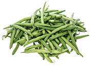 Green Beans Posters - Green Beans on white Poster by HandmadePictures