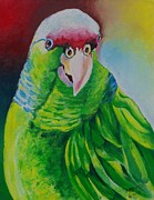 Amazon Parrot Paintings - Green beauty by Ainsworth Mckend