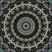 Green Brown Mandala Print by Kathi Shotwell
