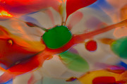 Close Up Glass Art Prints - Green Butterfly Print by Omaste Witkowski