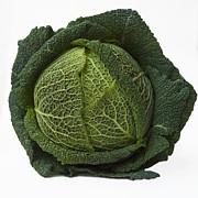 Green Cabbage Print by Bernard Jaubert
