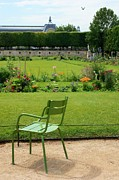 Garden Chair Framed Prints - Green Chair in Paris Garden Framed Print by Carol Groenen