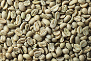 Green Beans Posters - Green Coffee Bean Background Poster by Tom Grundy