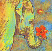 Green Elephant Print by Jane Schnetlage