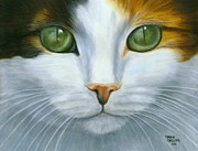 Sharon Challand - Green Eyed Calico Cat