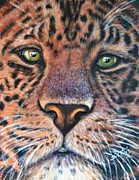 Up Painting Prints - Green Eyed Leopard Print by Shirl Theis